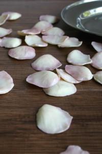 Chocolate Rose Petals