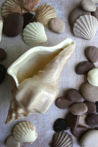 Chocolate Shells and Pebbles